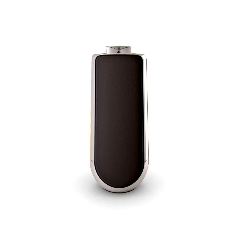 b o beolab 50 loudspeakers. Black Bedroom Furniture Sets. Home Design Ideas